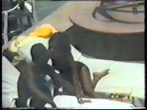 Whitney's Heartache - HARDCOPY REPORT 1994