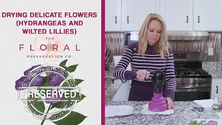 Perserving Delicate Flowers | Hydrangeas and Wilted Lillies