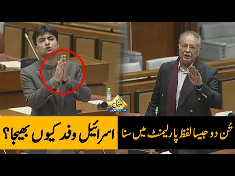 TUN DO Jaisa Lafz Parliament Main Suna | Pervaiz Rasheed VS Murad Saeed Heated Debate in Senate