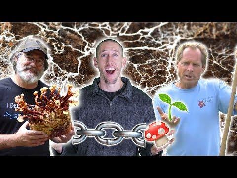 The BRIDGE Between PLANTS and SOIL! Beyond Organic Gardening