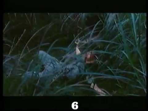 Wonderful Killer (1993) Shing Fui-on killcount