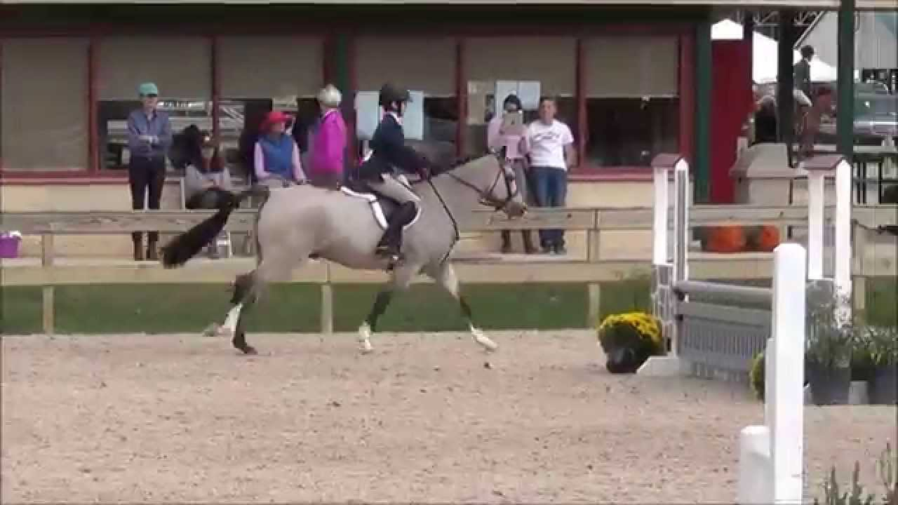 Monroyale at WIHS Regionals & Zone III Finals 2014 Large ...