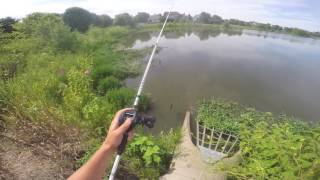 BIG Bass Jumps out of water for JIG