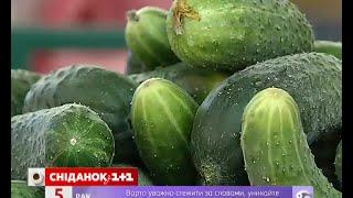 Які огірки найкраще засолювати, а які додавати в салат
