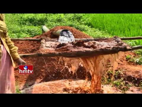Cool Farming | Growing Plants Without Fertilizers | Nela Talli | HMTV Exclusive