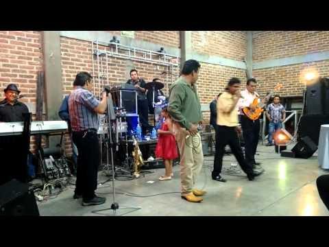 CONEJOS MUSICAL 8