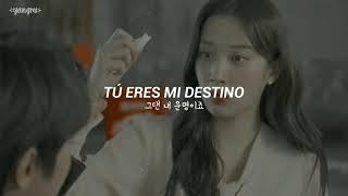 Download Ha SungWoon - Fall In You // Sub Español   Hangul   가사 [True Beauty OST Part 6]