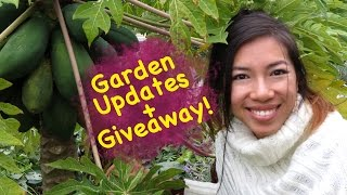 My Fall Garden Updates + Giveaway! *Entry Closed*