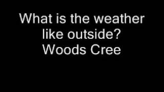 what is the weather like outside woods cree