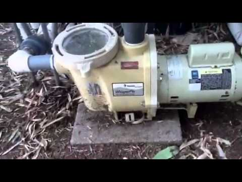 Pentair Whisperflo Pool Pump That Needs Bearings Youtube: pool motor bearings