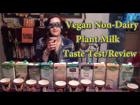 Vegan Non-Dairy Plant Milk Taste Test- 10 Kinds