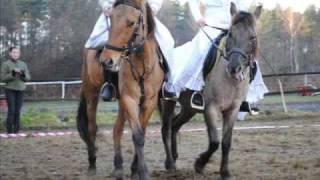 Szkółka Jeździecka