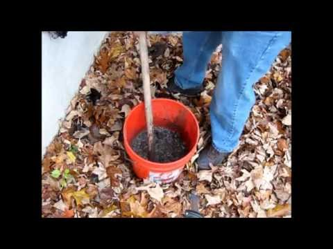 Making Wood Ash Lye From Ash To Crystals