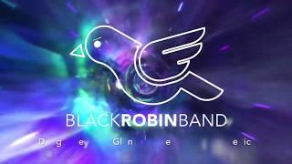 Black Robin Band – Video Killed The Radio Star
