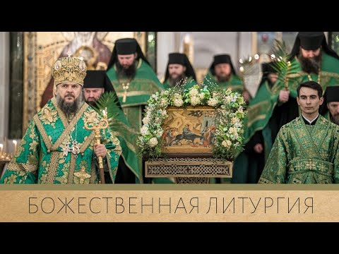 Божественная литургия. Вход Господень в Иерусалим
