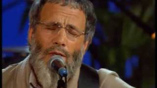 Watch Yusuf Islam The Beloved video