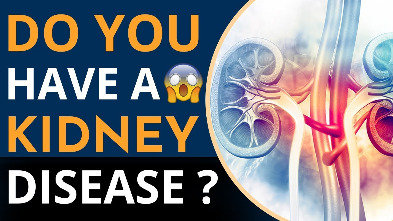 What Color Is Urine When Your Kidneys Are Failing Kidney Infection Urine Color Explained Youtube