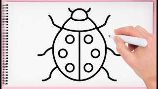 How to Draw a Ladybug Step by Step Drawing  Ladybug  Very Easy and Simple for Kids