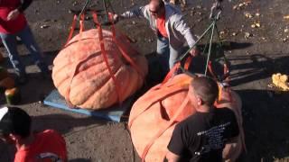 2011 - Great Pumpkin Drop - Utah Giant Pumpkin Growers