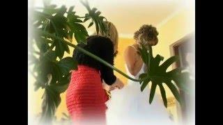 Свадьба в Ровно - клип невеста (Здолбунів)
