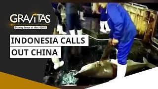 Gravitas: Indonesia Calls Out China
