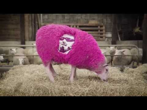 The Shepherd - Super Sheep