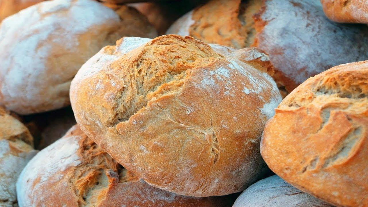 masa madre para hacer pan en casa