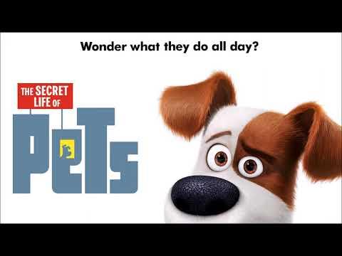 The Secret Life Of Pets ultimate soundtrack suite by Alexandre Desplat