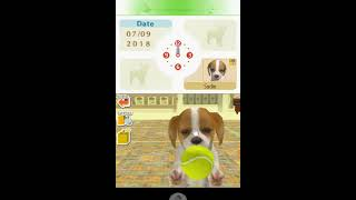 •Nintendogs Dalmatian and Freinds• Gameplay Part.1