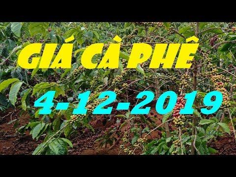 GI.Á C.À PH.Ê Hôm Nay 4/12/2019: TĂNG NHẸ THÊM 100 ĐỒNG/KG Phiên Thứ Ba Trong Tuần|PhoNui TV