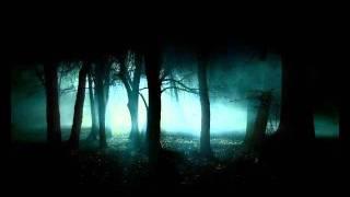 Xerox & Illumination vs. Chakra - 7 Days (Tokyo Live Mix)