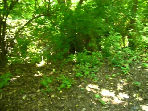 TOTALLY GNARLEY EASEMENT CABLE RUN IN CLEVELAND OHIO 06/27/12 Part 10