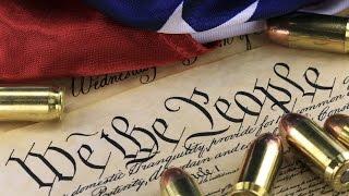 Trey Gowdy - Infringement of the 2nd Amendment thumbnail