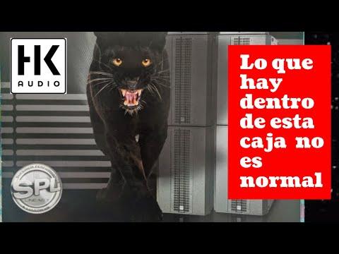 Unboxing HK Audio Linear 5 LTSA En Español