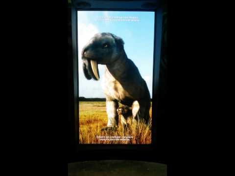 Biomuseo: El Gran Intercambio