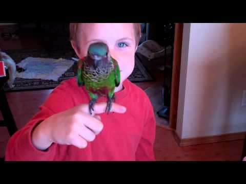 Ethan singing with the bird