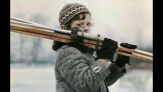 Боцман (1975). Детский, семейный фильм | Советские фильмы для детей