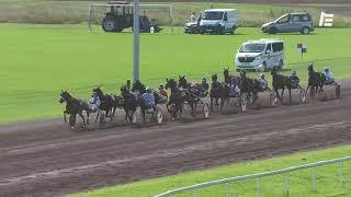 Vidéo de la course PMU GRAND PRIX DE TROT DE CAVAILLON