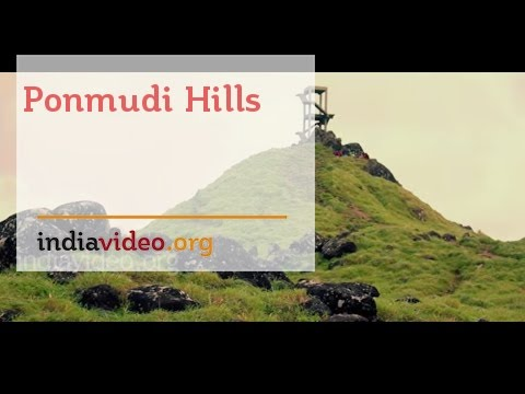 The Magical Mist of the Ponmudi Hills