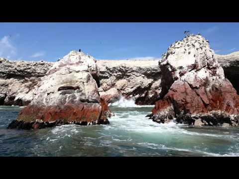 Paracas - Peru