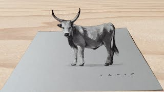 GREY CATTLE ILLUSION - How to Draw Grey Cattle - 3D Trick Art