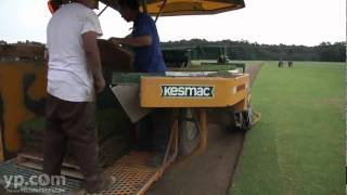 Winstead Turf Farms Inc | Turfgrass | Arlington, TN