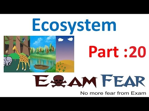 Biology Ecosystem part 20 (Nutrient cycling : gaseous & sedimentary cycle) class 12 XII