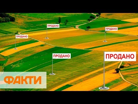 5 потерь Украины
