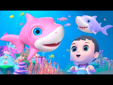 baby-shark-song-+-more-kids-songs-&-baby-nursery-rhymes-by-little-treehouse