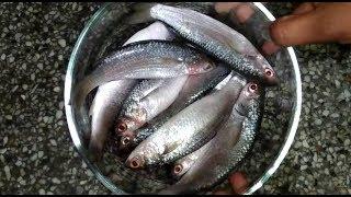 मछली को साफ करने और बना�...