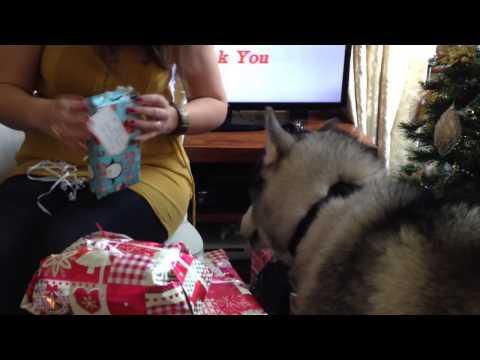 A very Husky Christmas