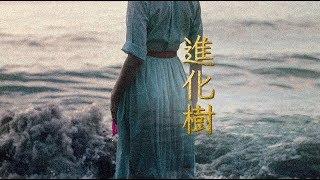 進化樹(ドラマ「やすらぎの刻~道」より) 歌:ピコピコぱんだ 音源制...