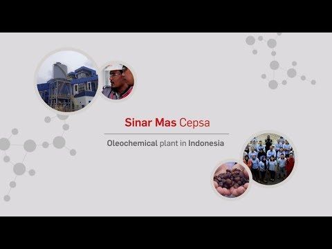 Sinar Mas Cepsa -  vegetable-based alcohols plant in Indonesia