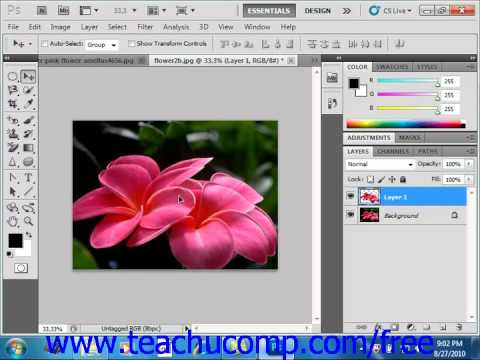 Photoshop CS5 Tutorial Copying & Pasting Pixel Selections Adobe Training  Lesson 7 11
